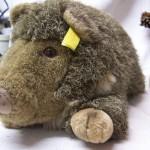 Groot Steiff wildschwein Wutzi 35 cm, verzamel item