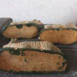 Antiek tweelingzus Kerst schaap van papier mache/composiet uit het 1e kwart 1900